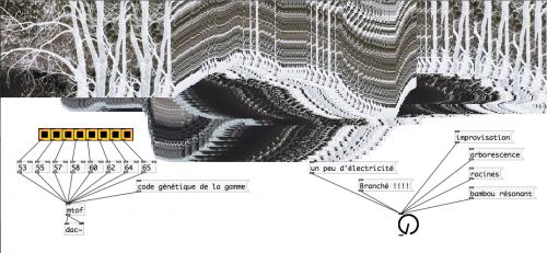 Etienne Brunet - concert improvisation