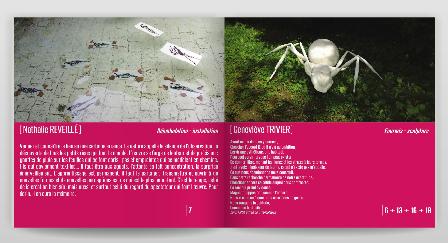 brochure2013